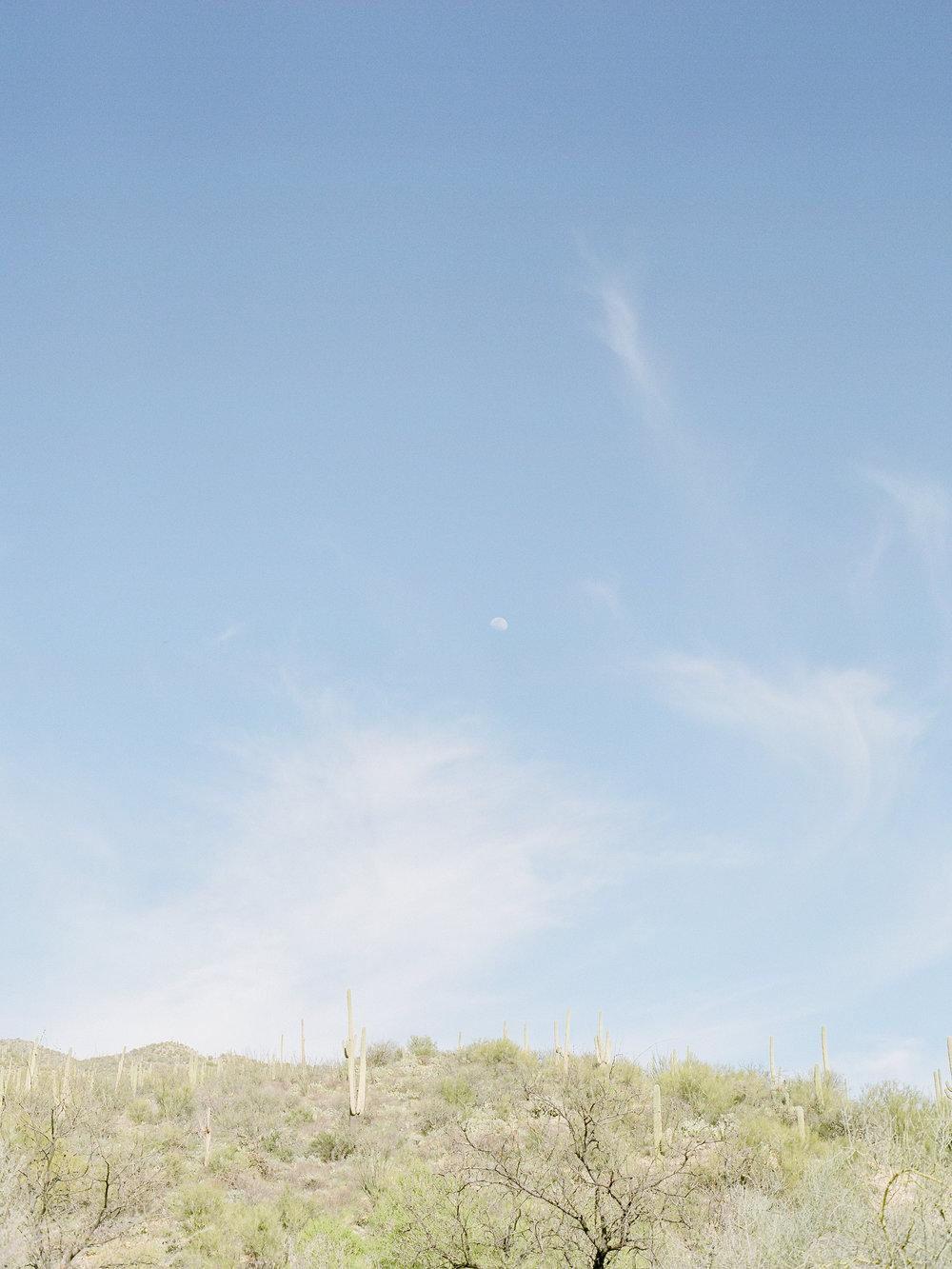 destination-california-film-photographer.jpg