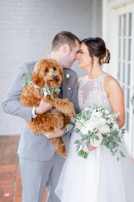 golden-doodle-puppy-wedding-portraits.jpg