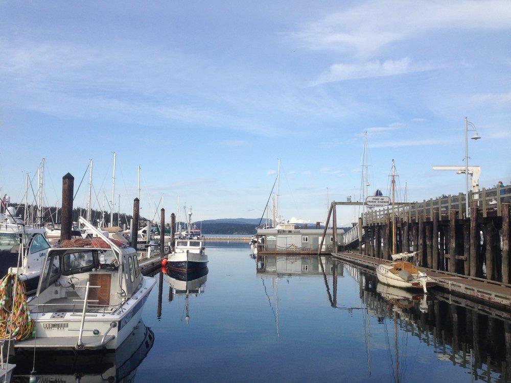 Friday Harbor -