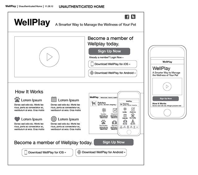 wellplay-unauthen-R1_3-.png