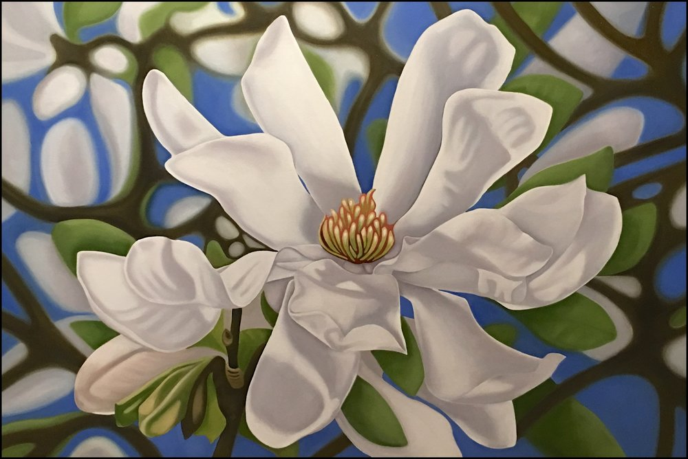 White Dove  Nicolle Aston, oil on canvas, 810mm x 1220mm  sold