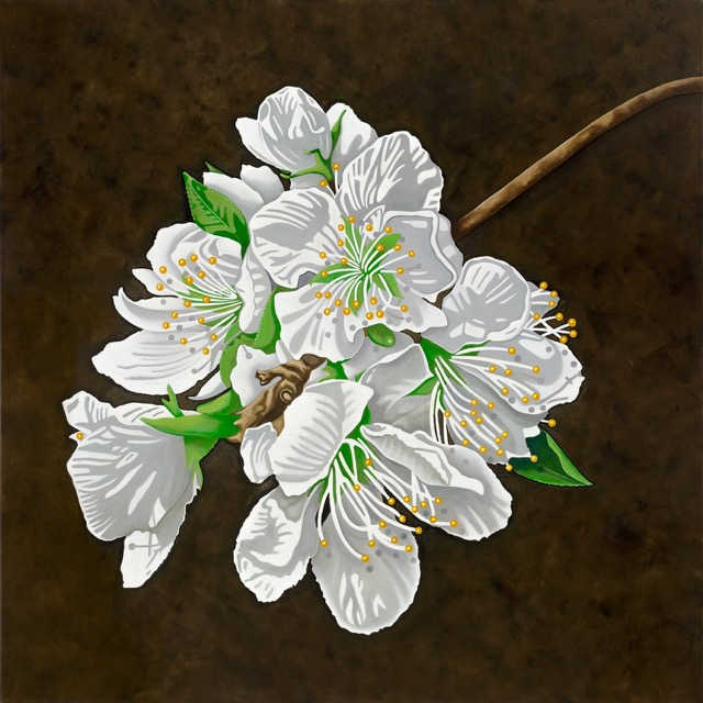 Hatepe Blossom  Nicolle Aston, acrylic on canvas, 1010mm x 1010mm  $3,900.00