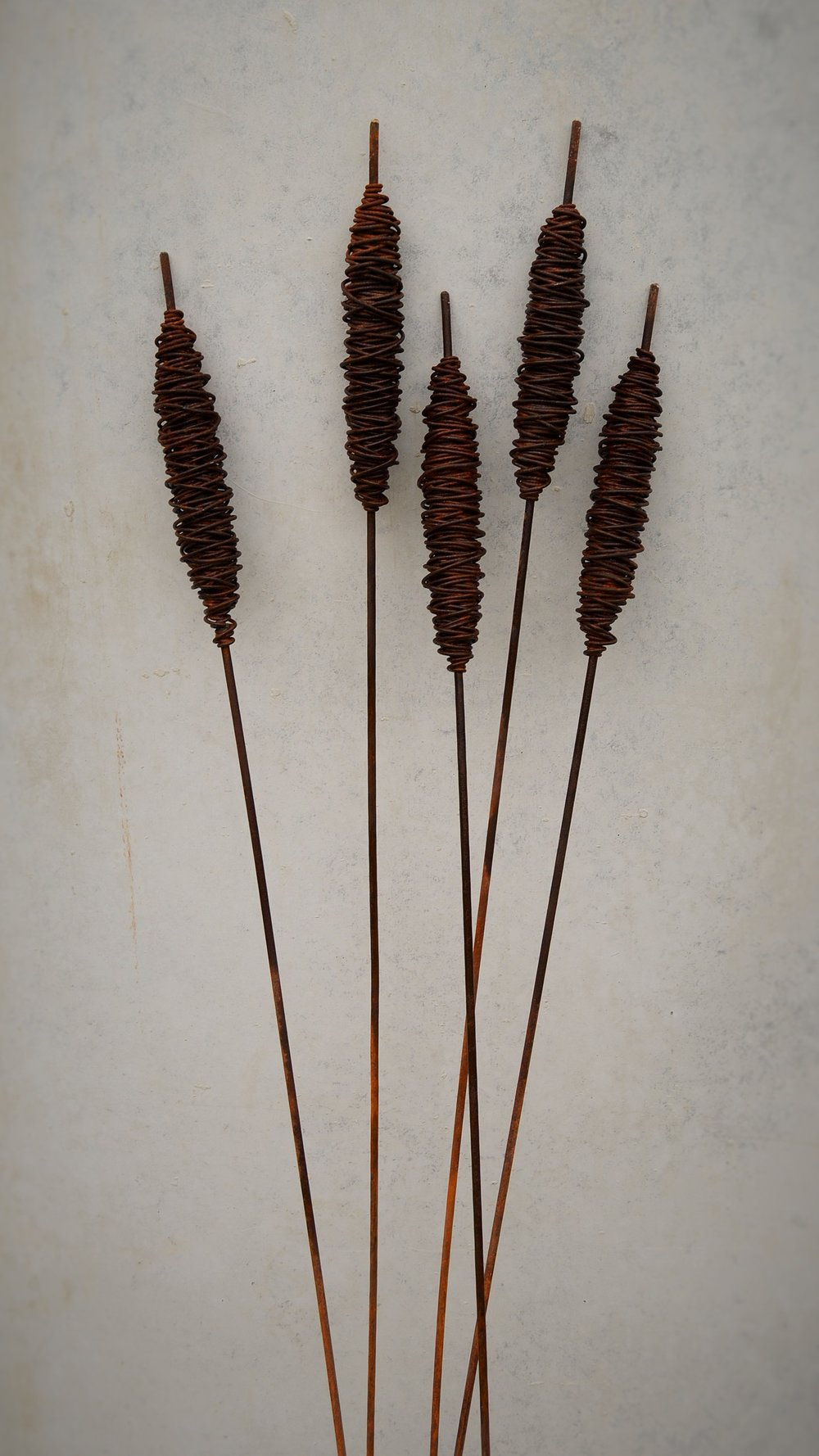 Rusty Bulrushes (8 available)  Grounded Art Nz, 1500mm tall  $70.00 ea