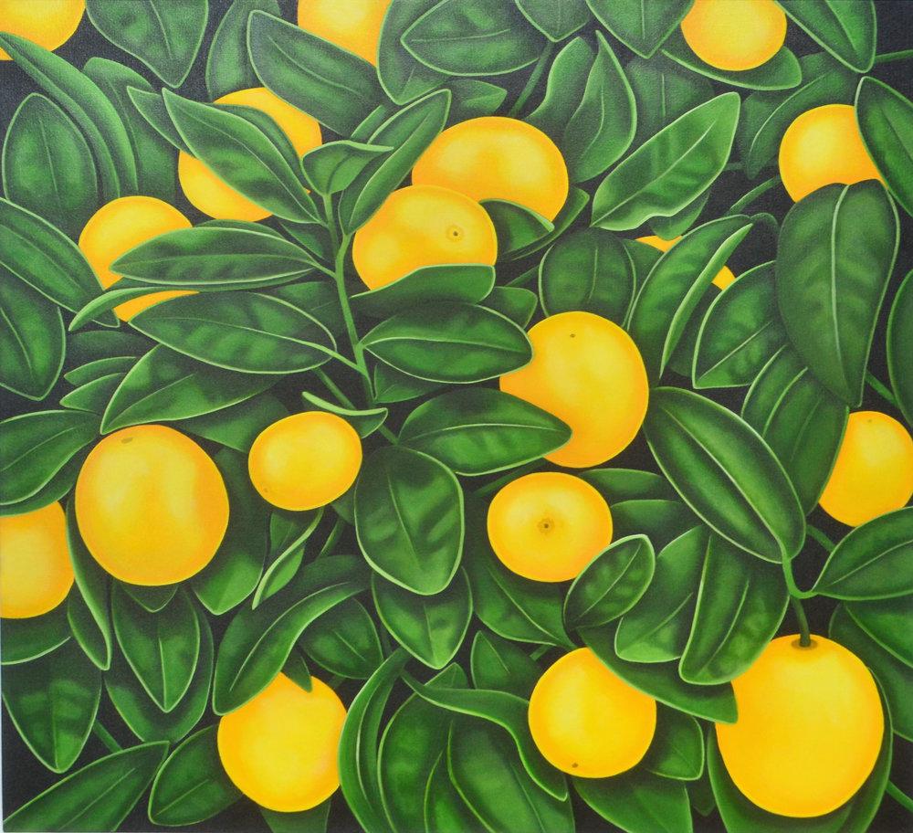 Orchard  Nicolle Aston, acrylic on canvas, 760mm x 760mm  $2,900.00