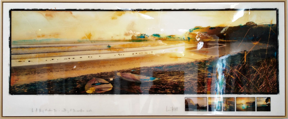 In All Things Of Nature (Tawharanui)  Louise Berkett, photograph & acrylic with resin finish, framed in beech. 1640mm x 675mm  sold