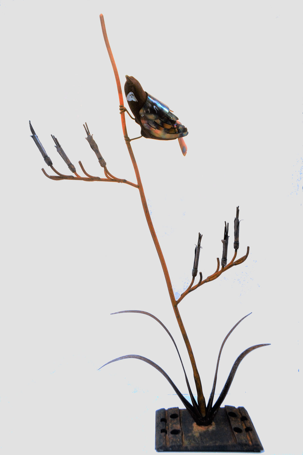 Steel Tuis (two available)  Mark Dimock, steel + copper + wood sculpture, 630mm x 1125 mm  $845.00 ea