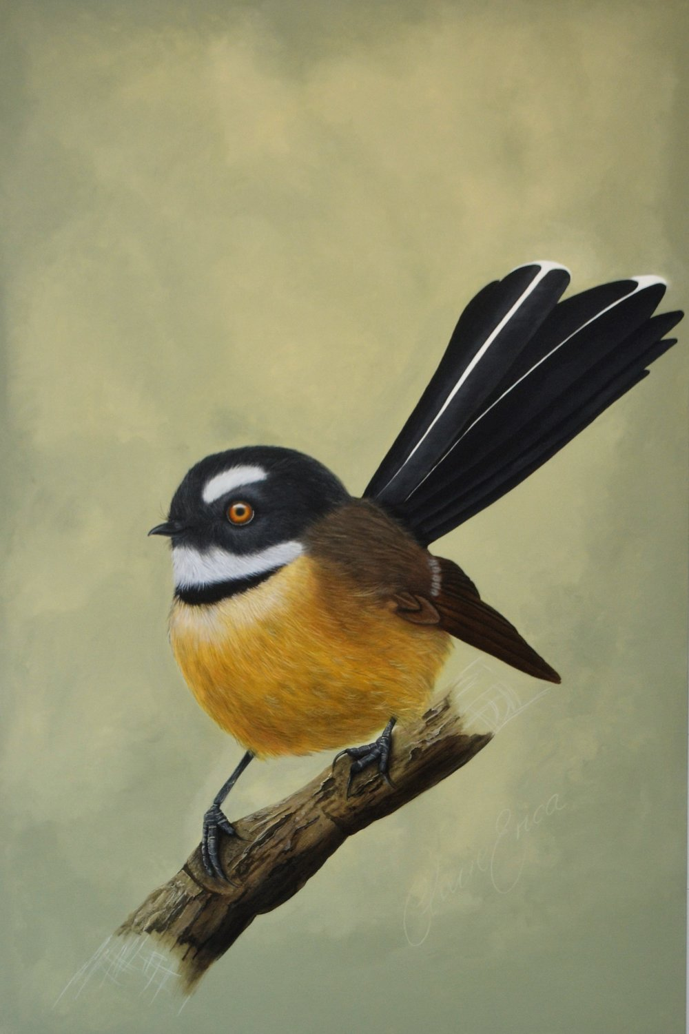 Fantail Flutter  Claire Erica, acrylic on canvas. 1000mm x 1500mm  $5,250.00