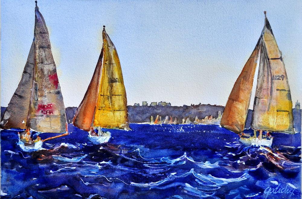 Sydney Harbor Race On