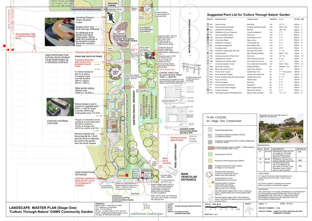 Indigenous Community Garden.jpg