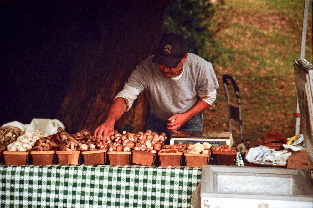 Mushroom Farmer.jpg