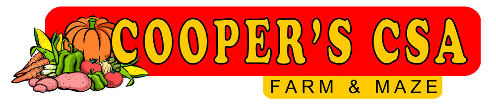 Cooper Logos hi-def_02.jpg