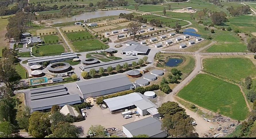 Lindsay Park Racing - Creightons Creek