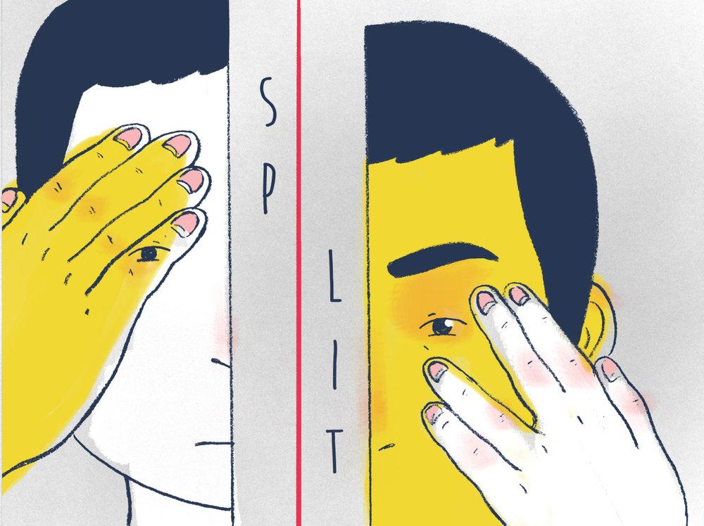 split_cover