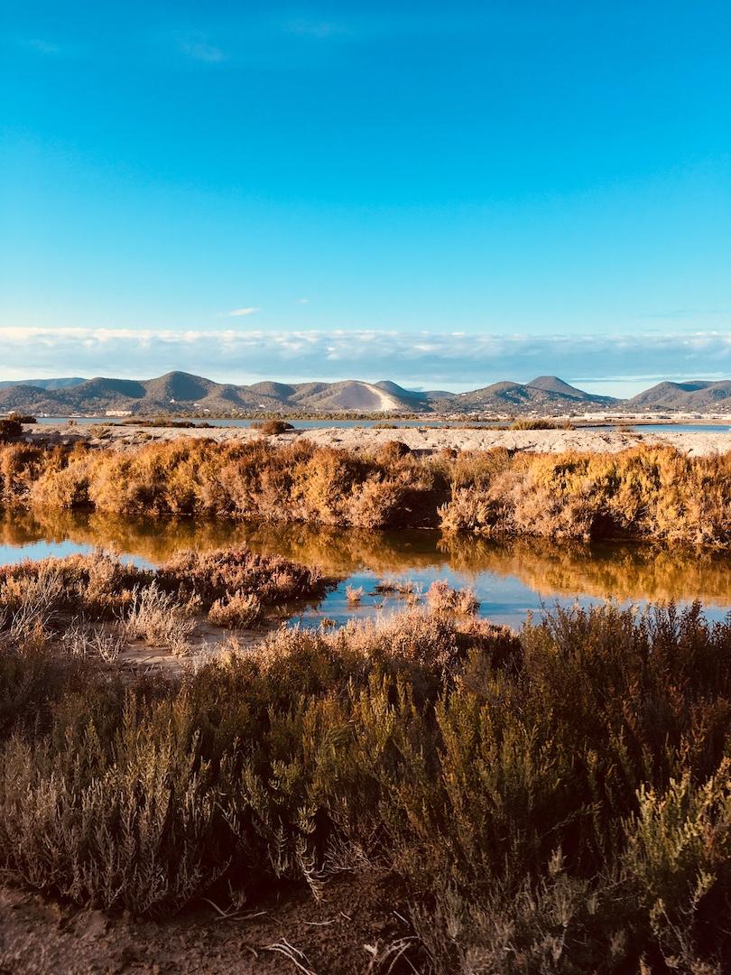 Salzbecken von Salinas