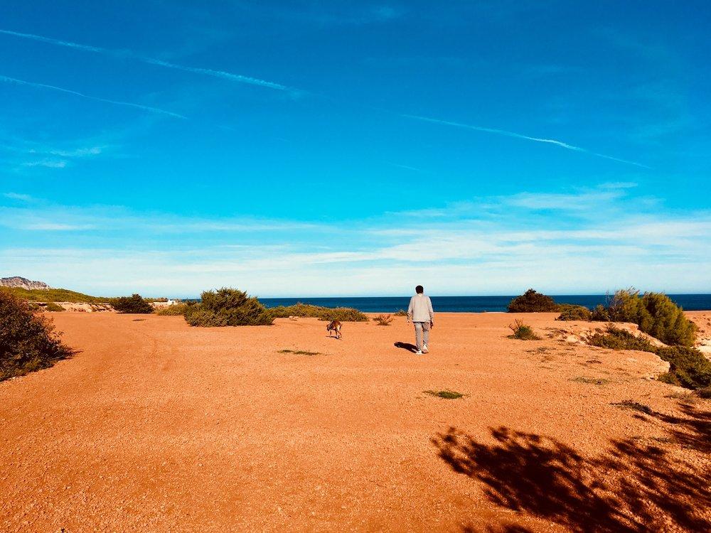 Weg entlang der Sandsteinküste
