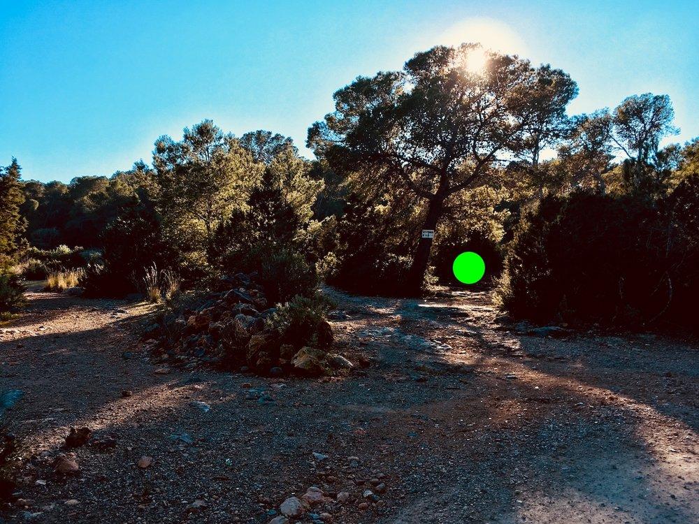 An der Weggabelung, bitte den mit Grün markierten Pfad wählen