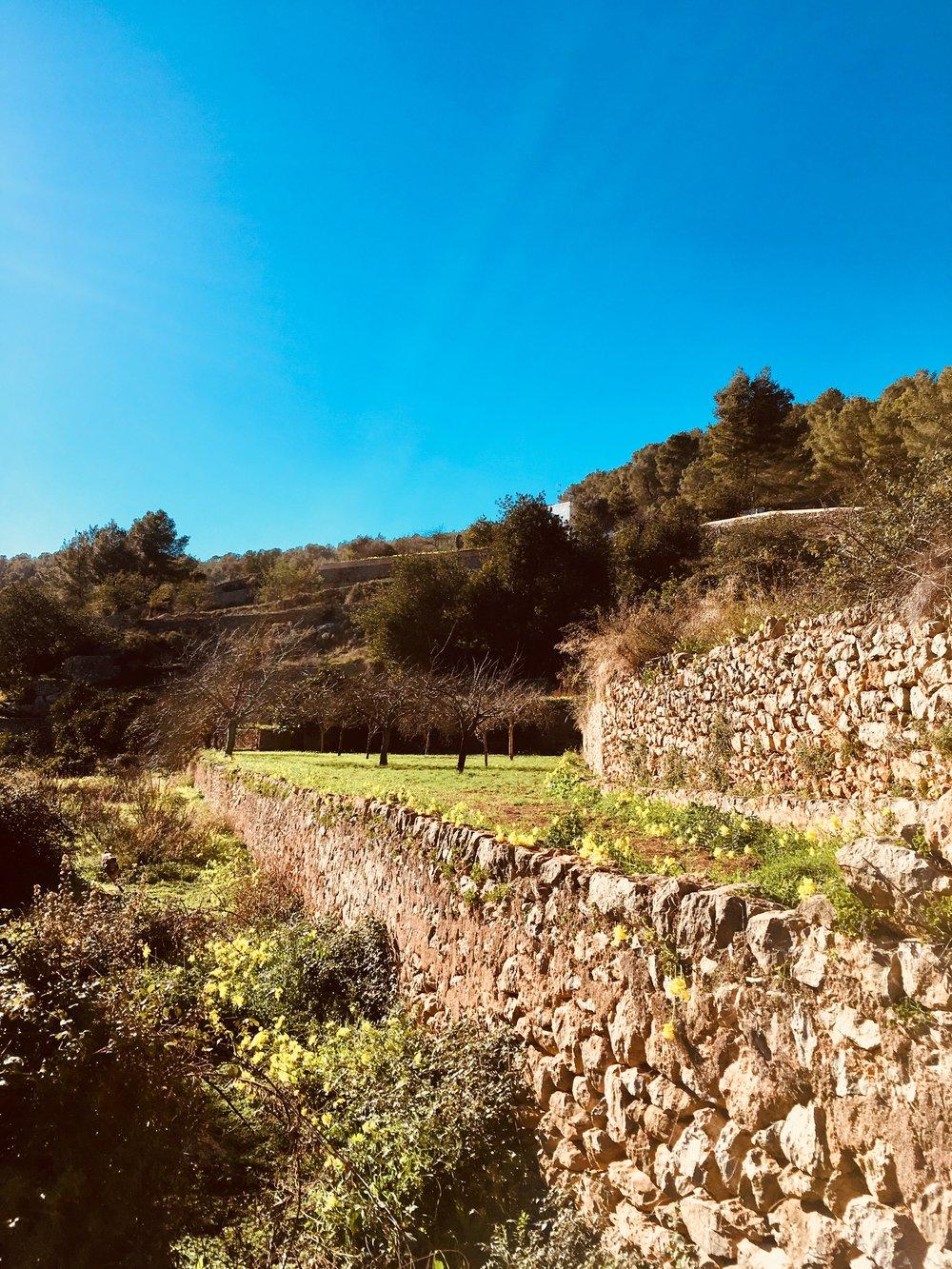 Es Broll, Ibiza