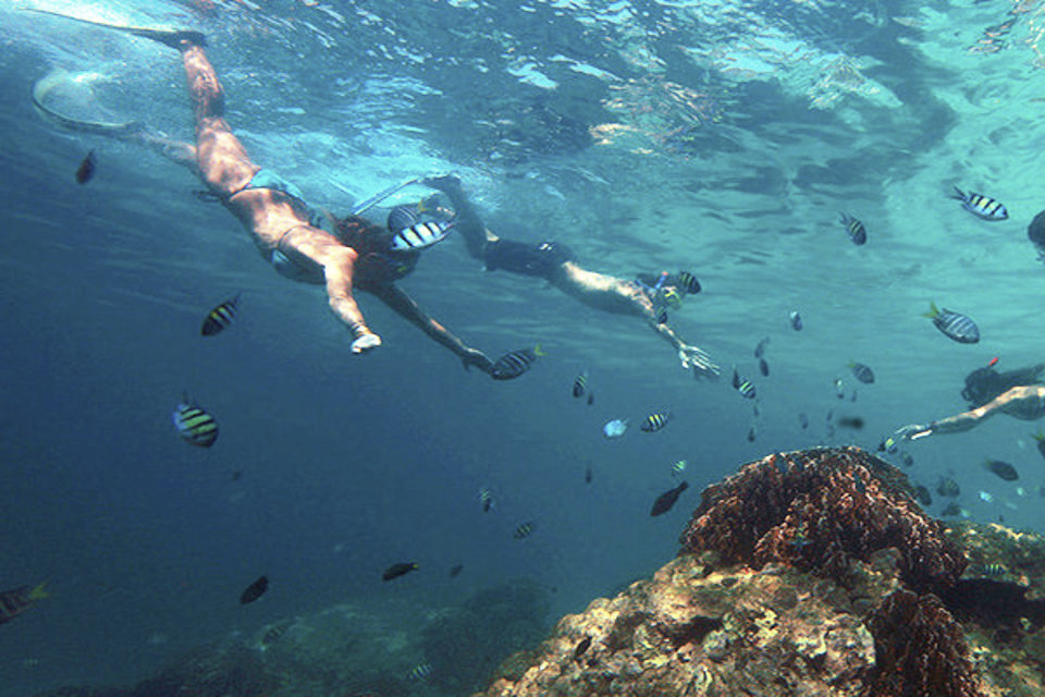 Surin Islands Snorkelling Holiday