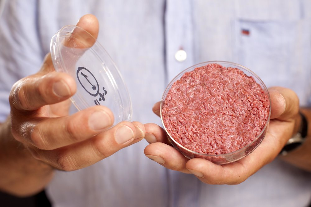 Thousands of individual muscle fibres combine to form a humble hamburger.