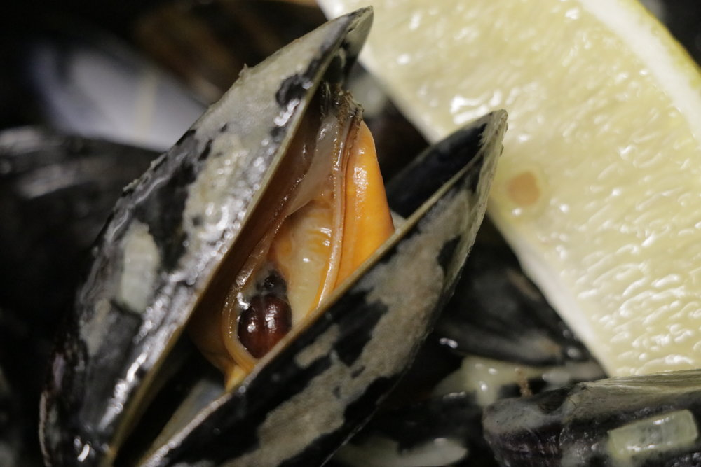 BRANCASTER MUSSELS IN WHITE WINE, CREAM AND GARLIC (AVAILABLE WHILST IN SEASON)