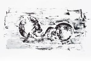 Philippe Cognée  Lithographie, 2014 61 x 90 cm, 50 ex./BFK Rives (Réservée aux membres donateurs)