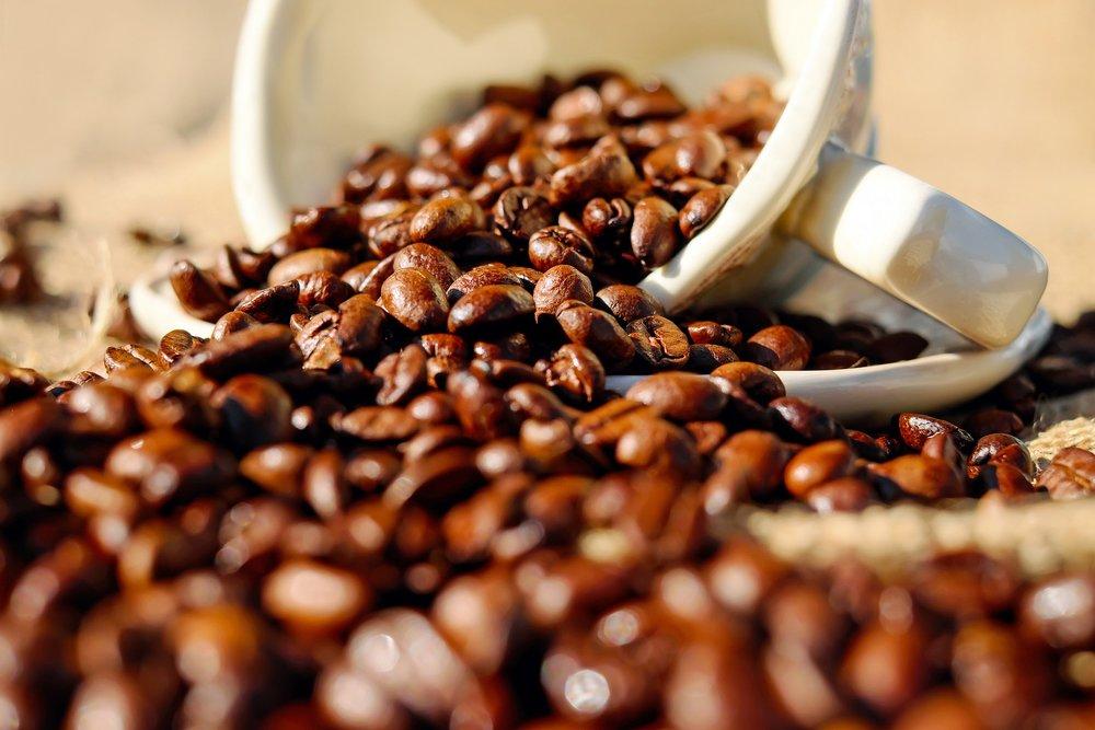 - Secteur : GourmetAnnée de création : 1945Son engagement Go for Good : EnvironnementalSes critères : Les produits Go for Good de la Maison Taillefer sont issus de l'agriculture biologique. L'agriculture biologique a recours à des pratiques de culture et d'élevage soucieuses du respect des équilibres naturels. Ainsi, elle exclut l'usage des produits chimiques de synthèse, des OGM, et limite l'emploi d'intrants.A découvrir : Le café arabica bio