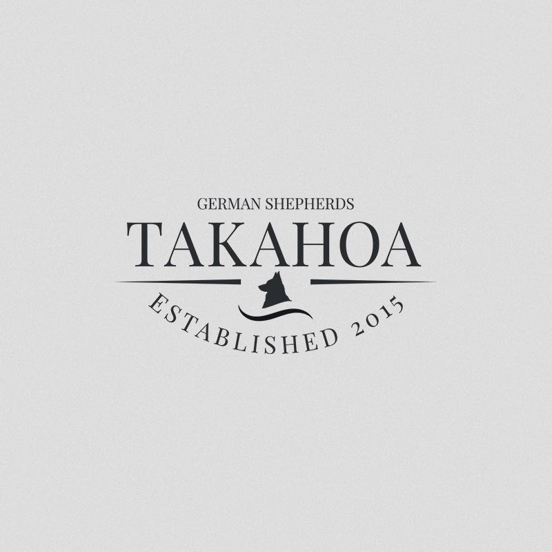 branding- takahoa.jpg