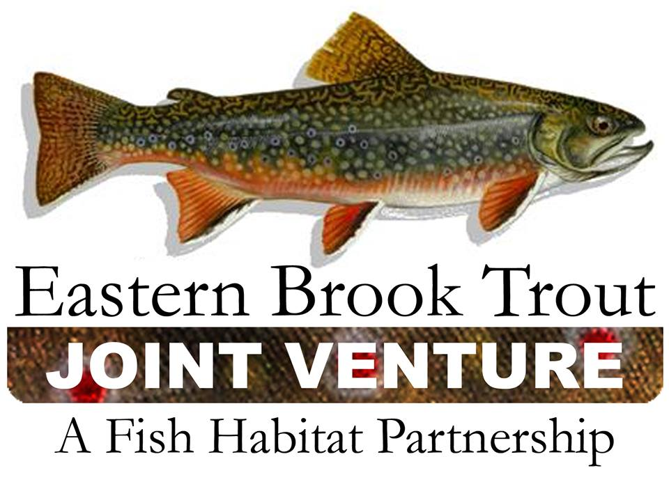 Eastern Brook Trout Joint Venture - The EBTJV is a diverse group of partners that work collaboratively to conserve eastern Brook Trout and their habitats. They are doing excellent work to developed conservation strategies that protect, enhance and restore wild Brook Trout. Learn more at www.easternbrooktrout.org.