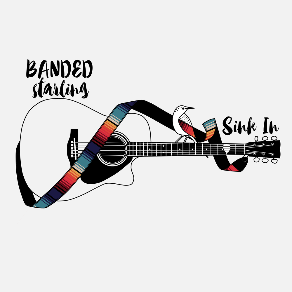 Banded Starling - Sink In Cover art #2.png