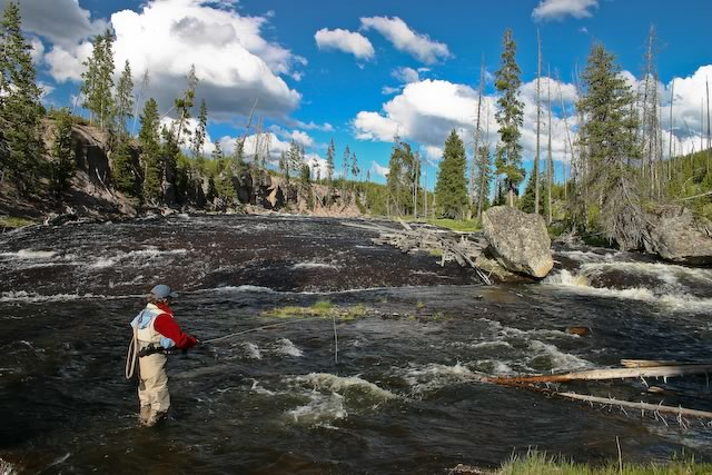 The Gibbon River in Yellowstone National Park