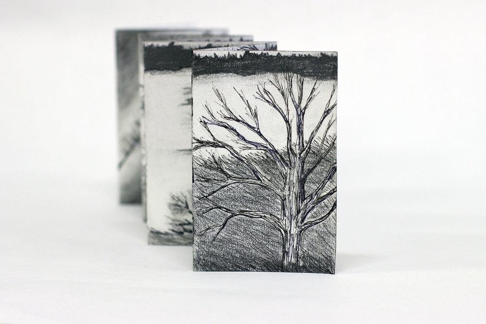 Cecelia Bleeker, Dreary Michigan, Graphite, ink, 2018, Scotts, MI