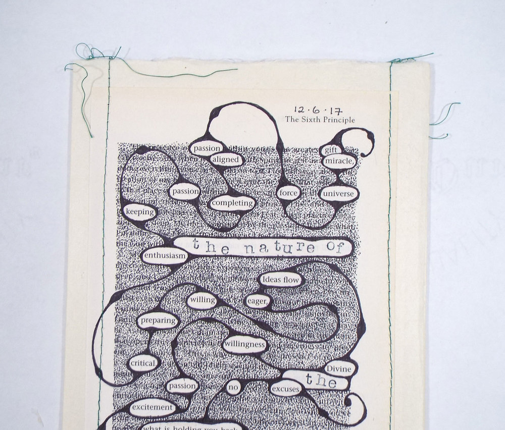 Debra Eck, The Nature of a Seed, Found Altered Text, Kochi Paper, Thread2018, $300, Jamestown, NY