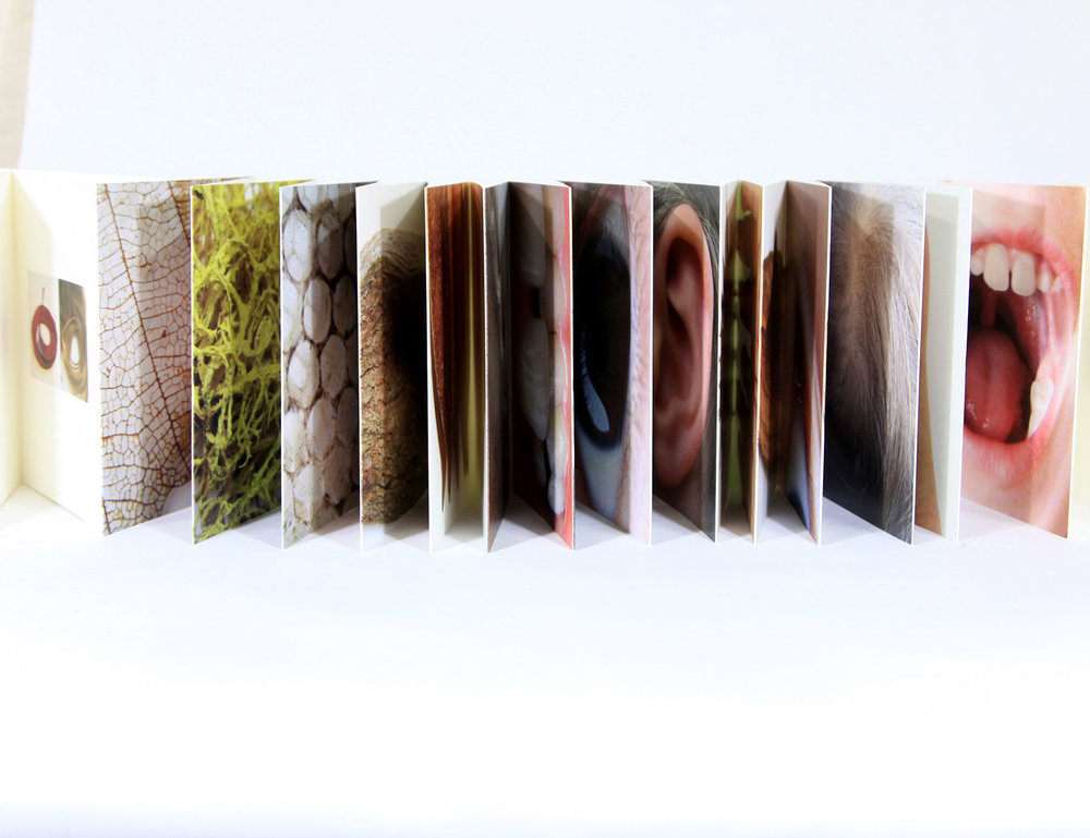 Lyall Harris, Nature, Nurture, Digital Photography, 2018, $150, Charlottesville, Va