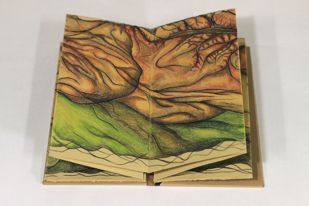 Eryn Lewis, Topography--Below the Surface, lithography with hand coloring, 2018, $100, Newark, NJ