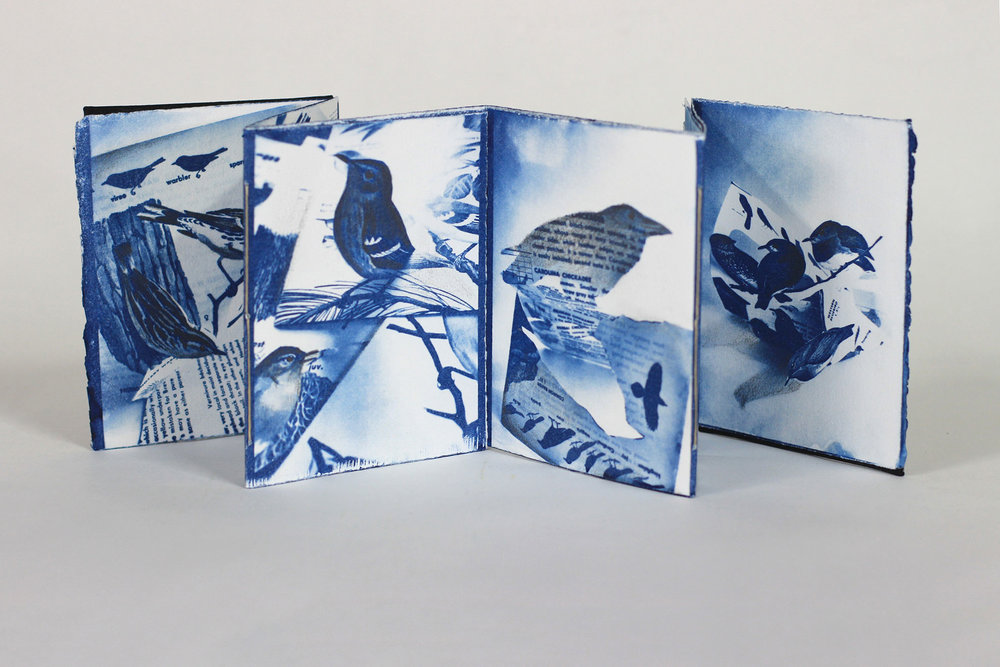 Mary Whalen, Black and Blue Bird Book, Cyanotypes with Graphite, 2018, $200, Richland, MI