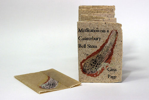 Artist: Gina Page Title: Meditation on a Canterbury Bell Stem Media: Handmade paper (firbark and abaca); chine colle; aquatints; stencilled text using stiff oil-based stencil paint. Overbeaten flax wrapper. Date: 2007 Price: $200 Location: Richmond, BC