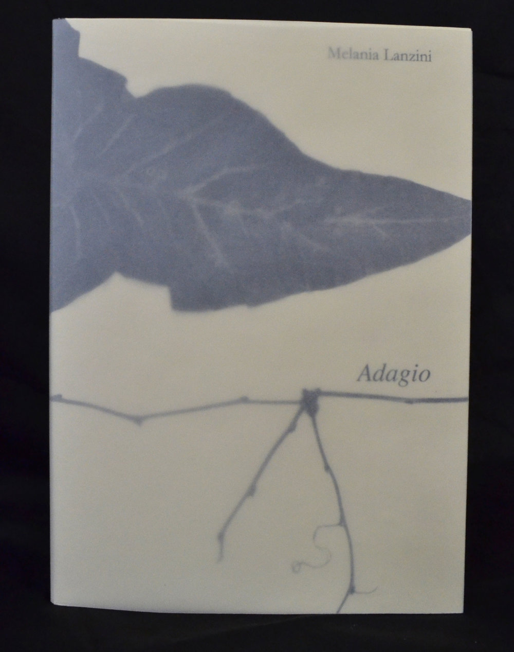 Melania Lanzini, Adagio, Risograph, monotype, drawings 2016, $250, Florence, IT