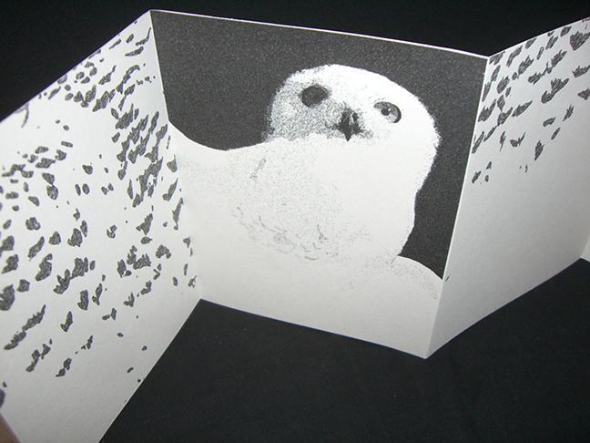 Cathryn Miller, Snowy Owl