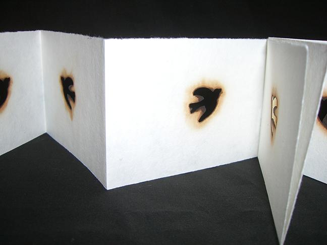 Emily Reiser, House Fire Book