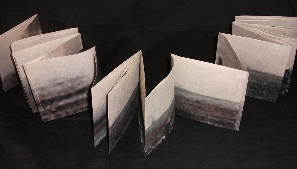 Alexa Karabin,  Cycle of Aversion,  Archival ink jet print on kitakata paper, 2012, Kalamazoo,MI