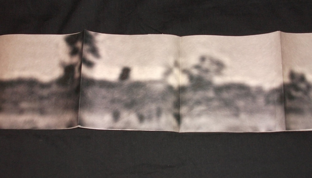 Alexa Karabin,  Cycle of Aversion,  Archival ink jet print on kitakata paper, 2012, Kalamazoo, MI