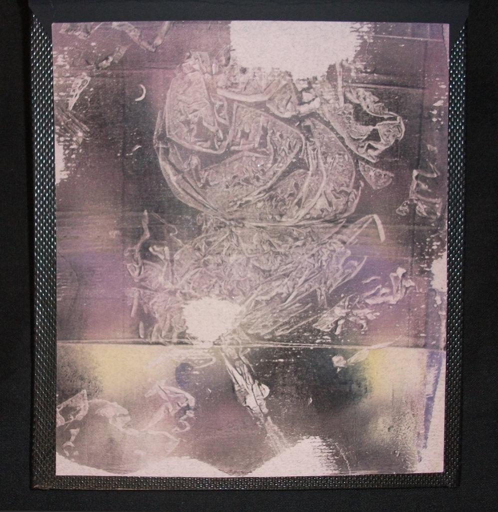 Taylor Adams,  Thanatophobia,  Plike, 2012, Mansfield, MA