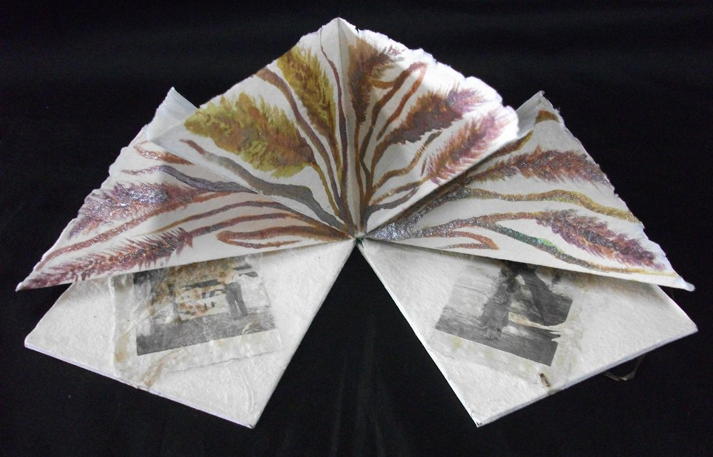 Patrice Schweitzer Nelson, Burning Alive in the Prairie State, Handmade Paper, Watercolor, Ink, 2010