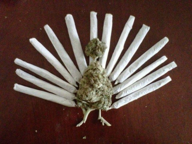 picture of weed turkey