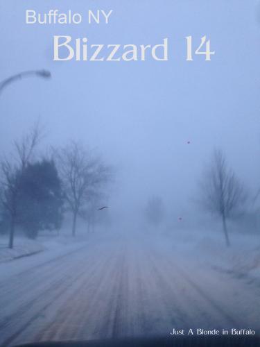 blizzard 14