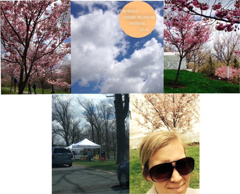 cherry blossom fest 14