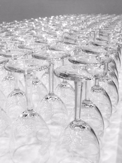 wine glassees polar bites