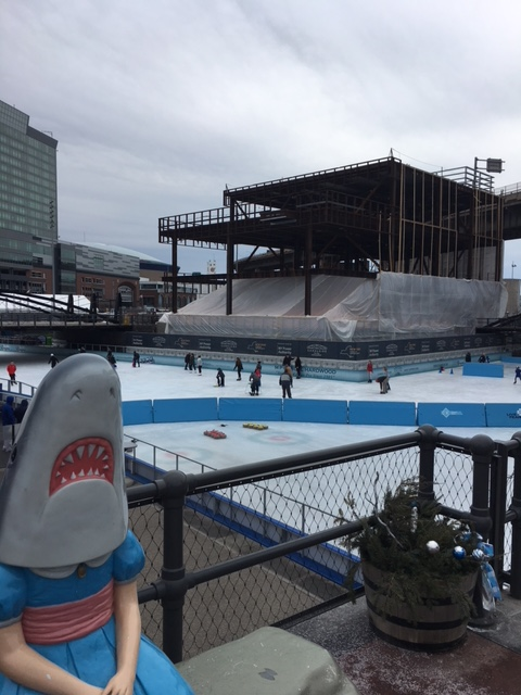 Learn to skate at Canalside with Skate Great!