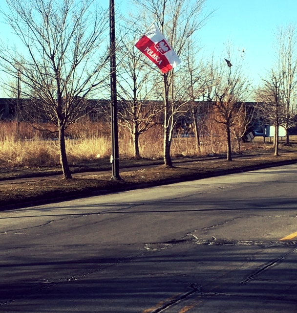 Polska flags are up on Paderewski Drive
