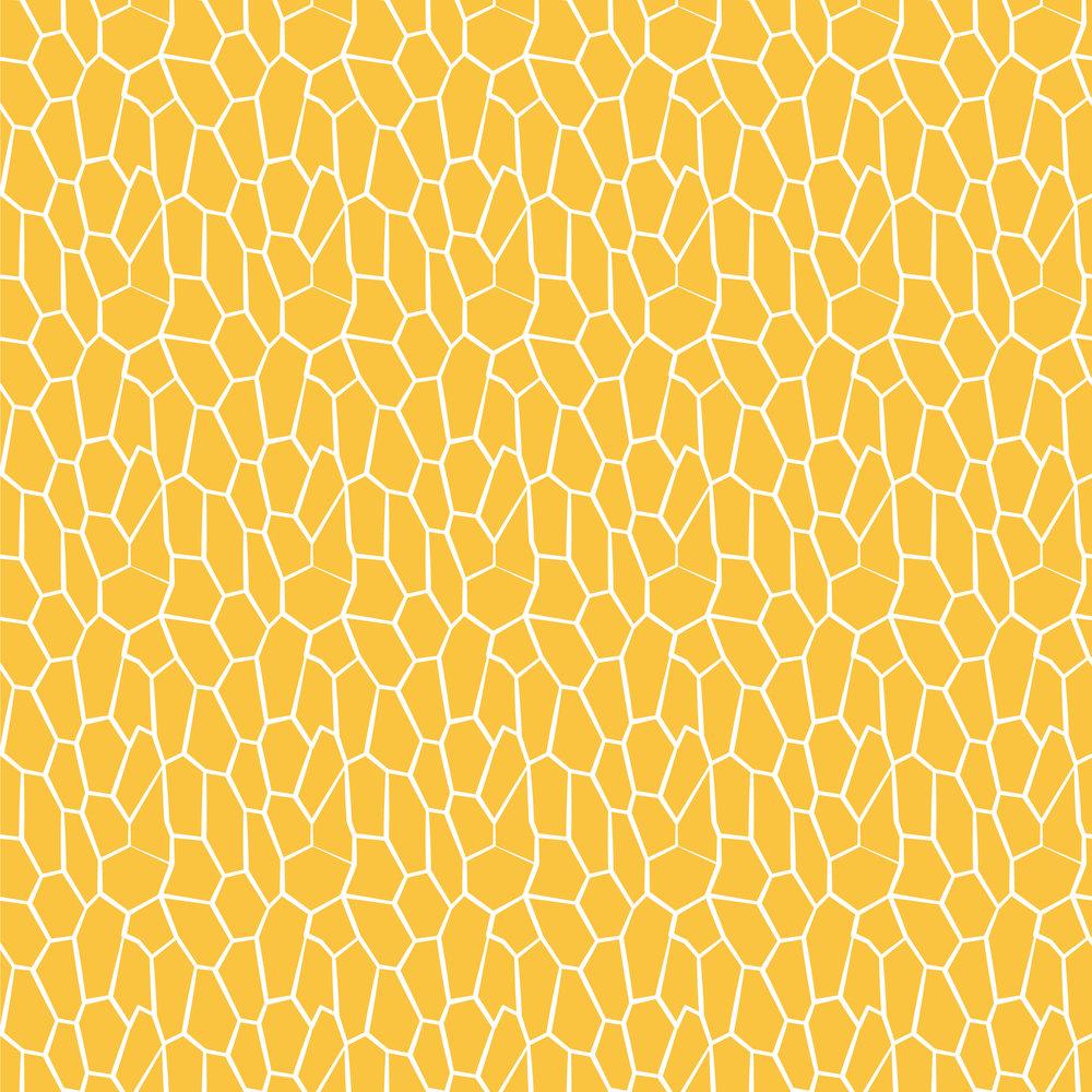 Geometric-Crackle-Pattern.jpg